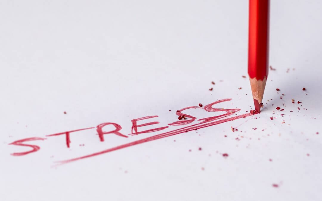 Too much stress has a toxic effect on wellbeing