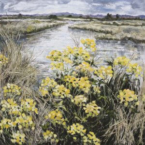 Wild Flowers, Pulborough Brooks by Christine Thompson 2