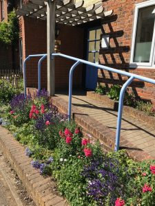 Creating a haven for Haslemere's butterflies and bees with our flower beds