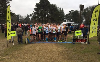 Run raises record amount for Holy Cross Hospital