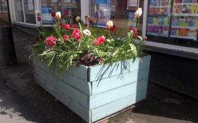 WEYHILL IN BLOOM NEEDS YOU!!!!