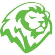 Lion Lane Consulting